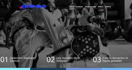 Diseño web Lima, Peru – Creacion de paginas web para vender.  Fundacion Leones, la primera fundacion en utilizar crowdfunding para la recolección colectiva de fondos en El pais.